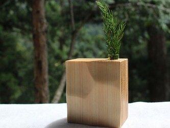 白い犬 杉と桧の一輪挿し №.1の画像