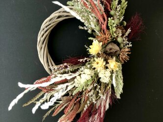 Dryflower natural wreath IIの画像