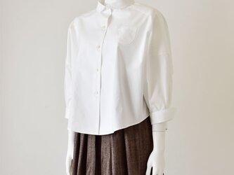 ゲーラカイトシルエットのシャツの画像