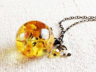 Botanical jewelry ミモザのネックレス M(17mm)の画像