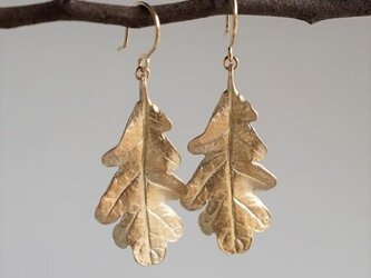 Oak leaf earrings {EP053K10}の画像