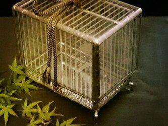 ガラスの虫籠(ホタル) - 壱の画像