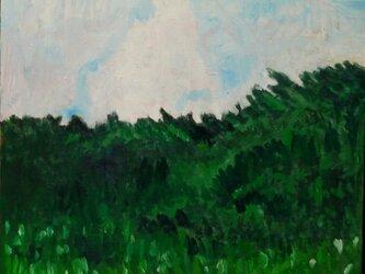 繁茂する草木と巨大な雲の画像