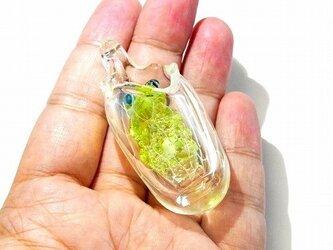 Re:Birth ペンダント トップ 【kengtaro/ケンタロー】 袋に入ったカエル ボロシリケイトガラスの画像
