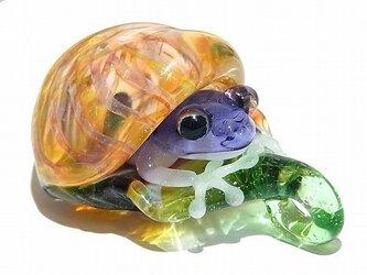Frog in the Shell ペンダント トップ【 kengtaro / ケンタロー 】 カエル ボロシリケイトガラスの画像
