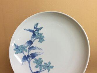 ブルースターのお皿の画像