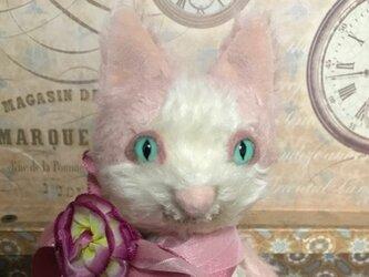 ハチワレ猫(ピンク)の画像