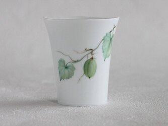 カラスウリのカップの画像