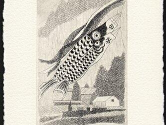 鯉のぼり/銅版画 (作品のみ)の画像