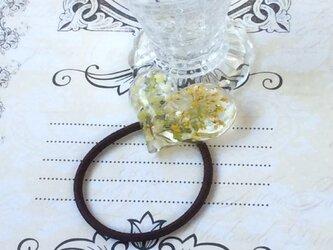 ハートの植物ヘアゴム(送料無料)の画像