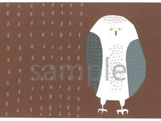 066 「ふくろう」ポストカード選べる5枚セットの画像