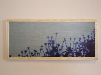blue scene 2の画像
