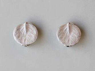 sv925 ユーカリのイヤリングの画像