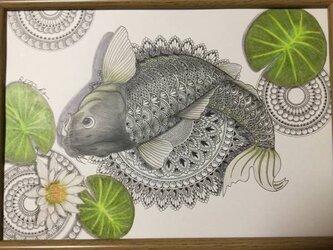原画 肉筆 一点もの ボールペンアート 鯉 「健やかな成長」 額装付き 百貨店作家 人気 ボールペン画 絵画 鯉の絵の画像