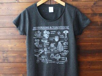 S.Mサイズのみ!Tシャツ(キノコ図鑑とネコ)-シルクスクリーン-13.CATS.WORKS × YO-COの画像