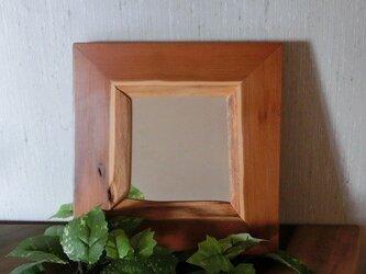 森の鏡 イチイ(一位)の画像