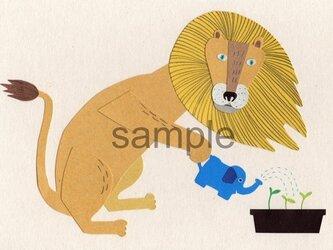 075 「お気に入りのぞうさんジョーロ」ポストカード選べる5枚セットの画像