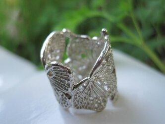 蝶リング-4の画像
