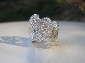 蝶リング-5の画像