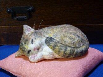 アンモニャイト キジトラ猫さん 絹の座布団付  Y様オーダー品の画像