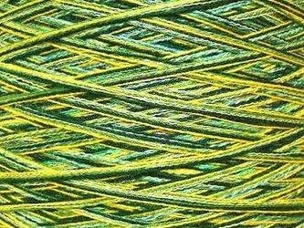 コットン・ウール糸 ミックスカラー 343 gの画像