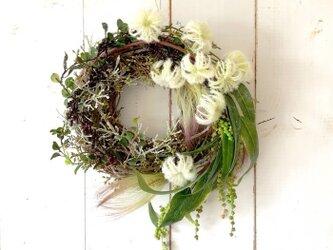 Green wreath・リッチグリーン2の画像