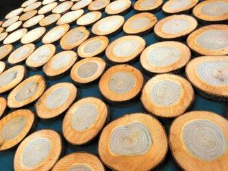 【100枚】さくら 桜 木 輪切り 8~10cm 厚み1cmの画像