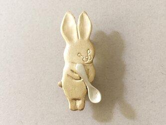 スプーンウサギの画像