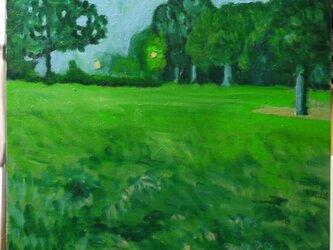 夕方の夏ぐもりの空の下の公園の画像