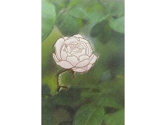 バラ No1 の画像