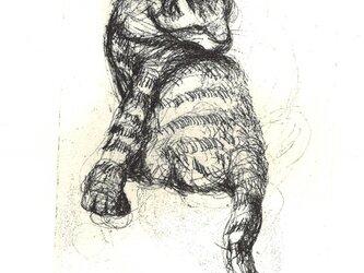 猫の銅版画Bの画像