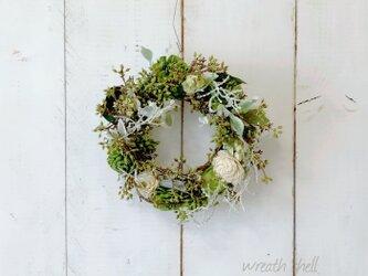 Green wreath ・たくさんのツイッグの画像