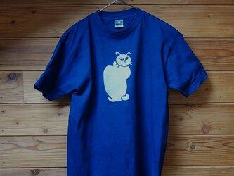 縦猫の藍染Tシャツの画像