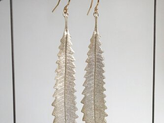 Banksia leaf earrings {EP055SV}の画像