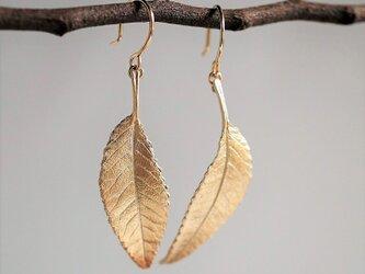 Elm leaf earrings {EP054K10}の画像