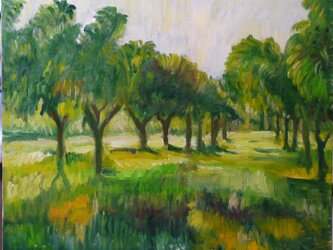 果樹園に漂う夕方の光 2の画像