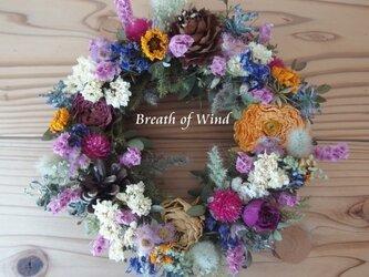 モッコウバラの花いっぱいリースの画像