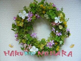 *ナチュラルリース~春の野原~*meg1010様用の画像