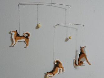 Dogモビール 3匹タイプ フルオーダーの画像