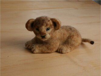 Baby Lionの画像