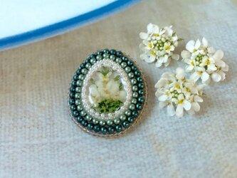 お花のブローチ(イベリス)の画像