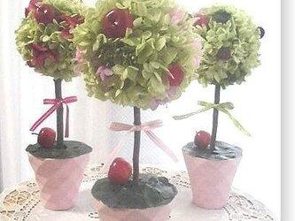 NO121 プリザーブドフラワー ギフト トピアリー(ピンク) 結婚 誕生日 送料無料の画像