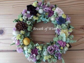 優しい色の花いっぱいリースの画像