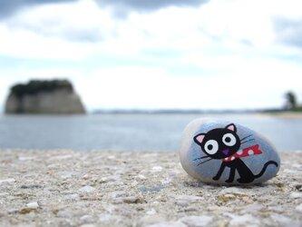 新米魔女 の使い 黒猫 ジュジュ です。の画像