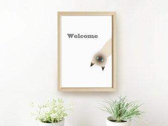 猫 ポスターA4 **玄関でお出迎え♪** シャムちゃんの画像