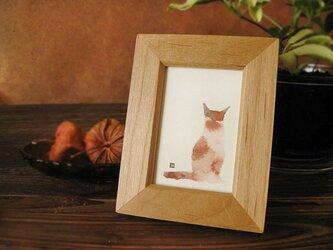 猫 たたずむ猫・・ミケの画像
