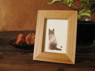 猫 たたずむ猫・・ヒマラヤンの画像