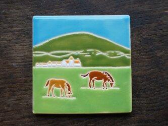 草原の馬 Caballos en el Campo[Sold]の画像