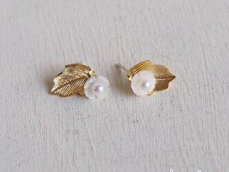 【 2WAY 】白蝶貝の花ピアス  - GOLD -の画像