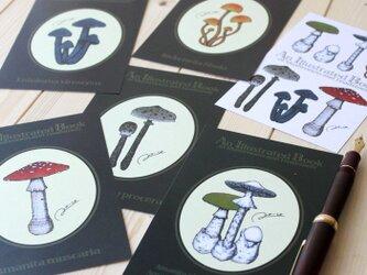 ●キノコ図鑑シリーズ2●アンティークキノコ図鑑のポストカード6種類セットの画像